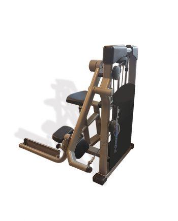 Aparat fesieri Ness Fit complet recondiționat, ideal atât pentru cluburi și săli de fitness, cât și pentru uz personal. FlexFit - Echipament Fitness
